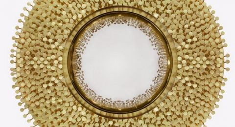 Limited Edition Furniture Get to Know Robin Wall Mirror